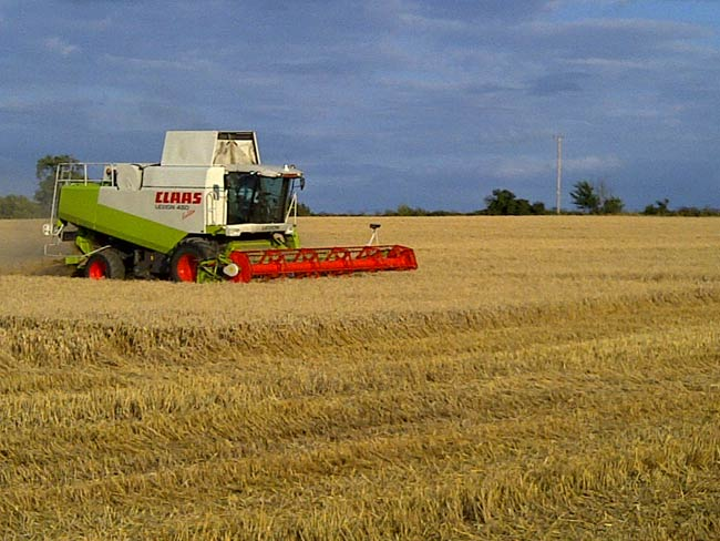 Combining in East Anglia